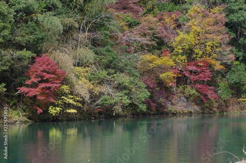 Foto op Canvas Khaki 秋の湖(白丸湖)