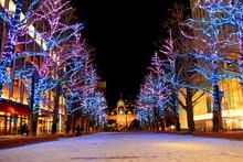 北海道、札幌市 、北3条広場akapuraのホワイトイルミネーションの風景、