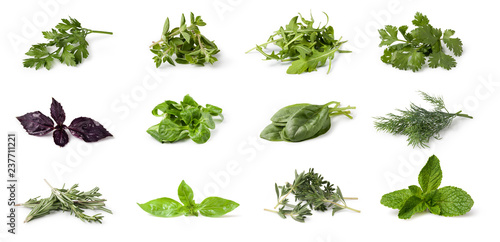 Fotografia Fresh spices and herbs
