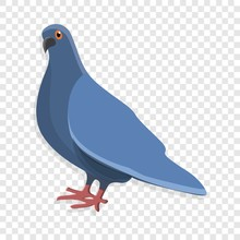 Blue Pigeon Icon. Cartoon Of Blue Pigeon Vector Icon For Web Design