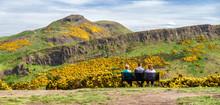 Arthur's Seat And Salisbury Crags Over Edinburgh
