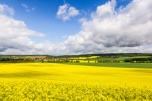 Spring Rural Fields, Green And Yellow. Amazing Countryside View, Colorful, Fresh Air, Amazing Blue Sky And Clouds. Beautiful Scene, Full Of Sun And Love. Welcoming For Adventure, Hike, Travel, Cycle.