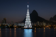 Christmas Tree In The Lake In ...