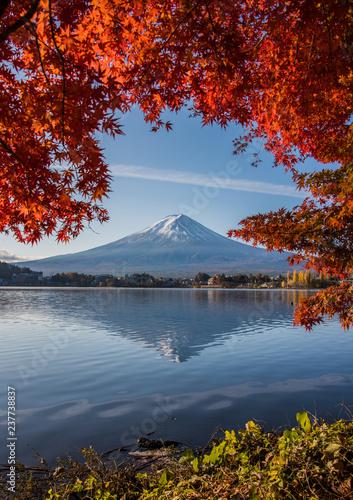 Wall Murals Photo of the day Mount Fuji, Autumn in Mt. Fuji, Japan - Lake Kawaguchiko , Colorful Autumn Season and Mountain Fuji with morning sunrise and red leaves at lake Kawaguchiko, Japan.