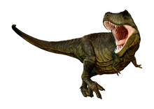 3D Rendering Tyrannosaurus Rex...
