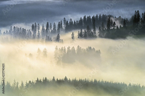 Canvas Prints Morning with fog first ray