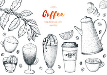 Coffee Cups, Beans And Coffee Tree Illustration. Vintage Design For Coffee Shop. Engraved Vector Illustration