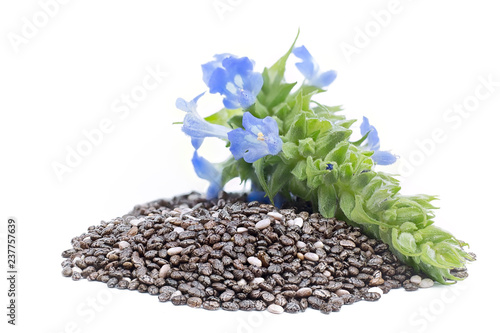 Fotografiet Chia (Salvia hispanica) Pile of seeds with flowers on white background