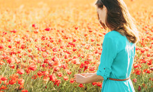 Young Woman Picking Poppies In...