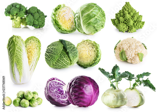 Cabbage collection isolated on white background.