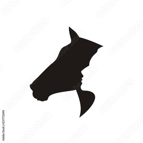 Obraz na plátně Силуэт коня и человека