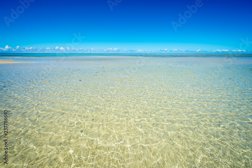 Bright scenic view of tropical sunlight rippling over golden sands in shallow tr Canvas Print