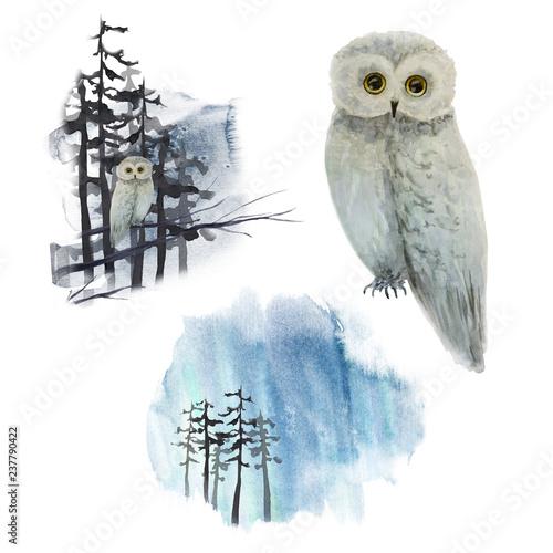 Keuken foto achterwand Uilen cartoon Watercolor winter landscape with owl on tree in forest