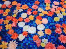 浜松フラワーパーク 水に浮く花々 静岡県浜松市 日本