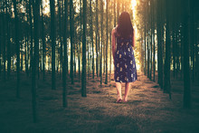 Woman Walking In The Forest With Dreamy Realm, Fantasy Imagination