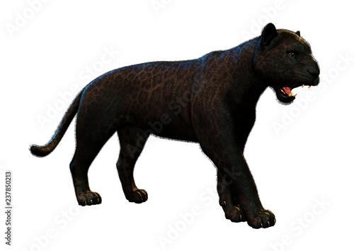 Tuinposter Panter 3D Rendering Black Panther on White