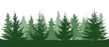 Green Forest, Fir Trees Silhou...