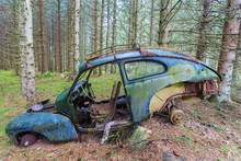 Old Car Wreck Standing In Woods