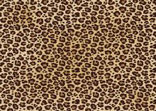 Leopard Spotted Fur Texture. V...