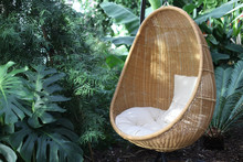 Rattan Oval Hanging Chair With...