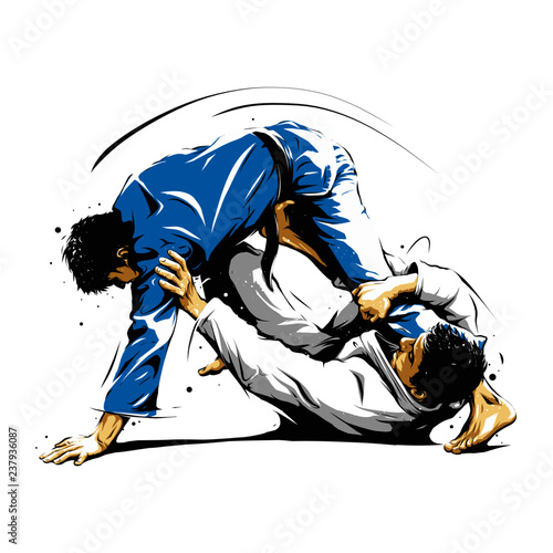 Photo Brazilian Jiu-Jitsu action 3