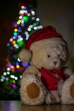 White Teddy Bear Wearing Red S...