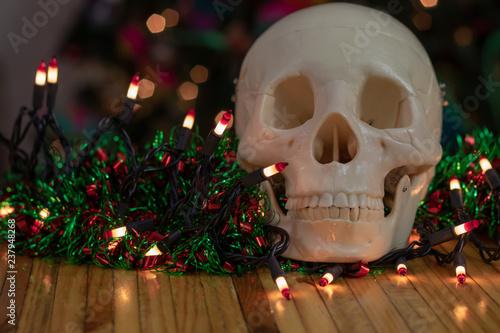 Fotografie, Obraz  Have a spooky and festive Christmas skull