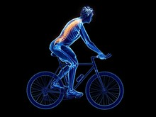 Illustration Of A Cyclist's Sp...