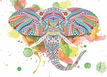 Elephant On Watercolor Background