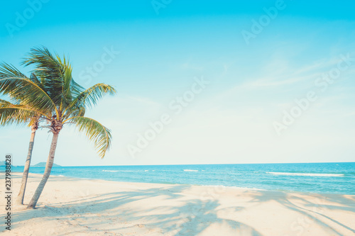 Foto auf AluDibond Palms Beautiful landscape of coconut palm tree on tropical beach (seascape) in summer. Summer background concept.