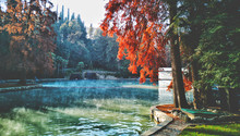 Hot Spring Autumn Pond Garda Lake Thermal Park