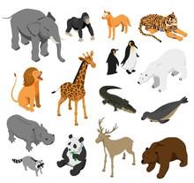 Zoo Animals Isometric Set