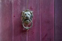 Lion Knocker On Purple Wooden ...