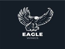 Eagle Or Hawk With Outstretched Wings.