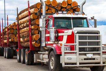 Heavy loaded timber transpo...