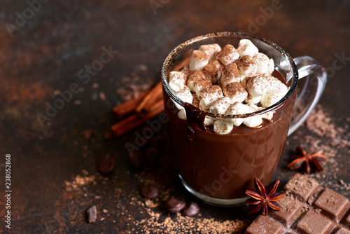 Foto auf AluDibond Schokolade Homemade spicy hot chocolate with mini marshmallow.