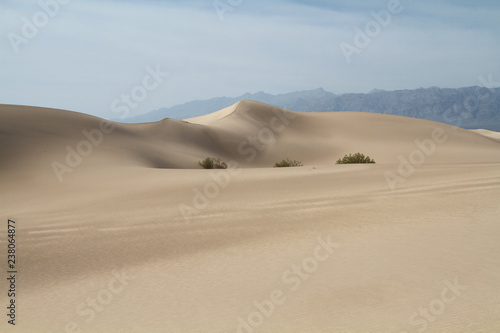 Foto  Sand dunes at Death Valley National Park, CA, USA