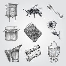 Hand Drawn Apiary Sketches Set. Collection Of Honey, Honey Dipper, Bee Smoker, Flower, Beekeeper Hat, Wooden Hive. Honey And Beekeeping Sketches Isolated On White Background.