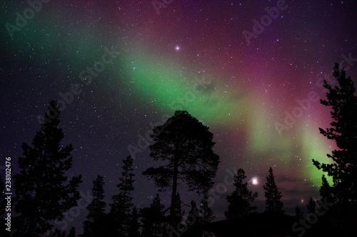 Night sky with Aurora Borealis, planet Jupiter and The Pleiades above boreal forest Tapéta, Fotótapéta