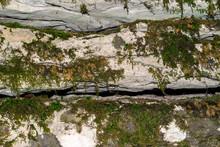 Background, Texture - Mossy Layered Natural Stone, Limestone Canyon Wall