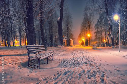 Fotografía  Winter evening in a central park.