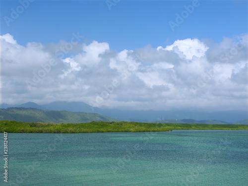 Foto op Plexiglas Oceanië Coast at Port Douglas Queensland