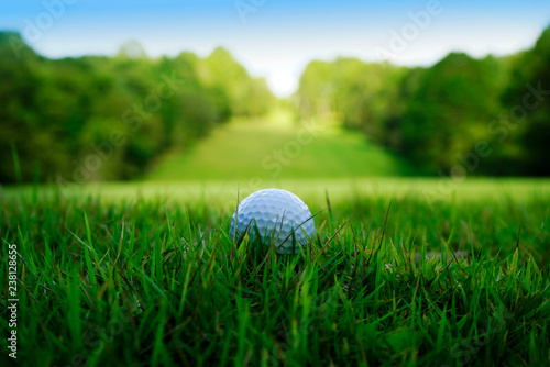 Obraz na plátně Golf ball on green in beautiful golf course at sunset background