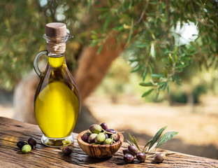 Fototapeta Do gastronomi Bottle of olive oil and berries are on the wooden table under the olive tree.