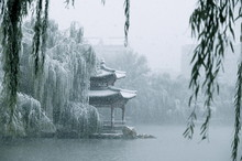 Winter InChinese Park