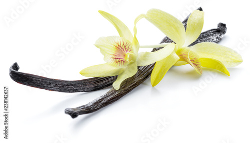 Foto op Plexiglas Kruiderij Dried vanilla pods and orchid vanilla flower on white background.
