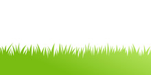 Vector Green Grass: Natural, O...