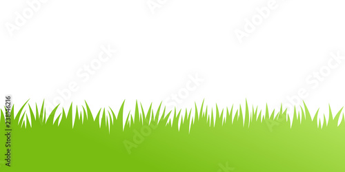 Obraz Vector green grass: natural, organic, bio, eco label and shape on white background - fototapety do salonu