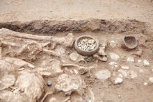 Archaeological Excavations. Human Remains (bones, Skeleton And Skull) In The Ground, With Little Found Artefacts In The Tomb. Real Digger Process. Outdoors, Copy Space, Close Up.