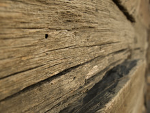 Texture Of Old Wood Nod Oak Nod, Fibre De Lemn, Fisuri